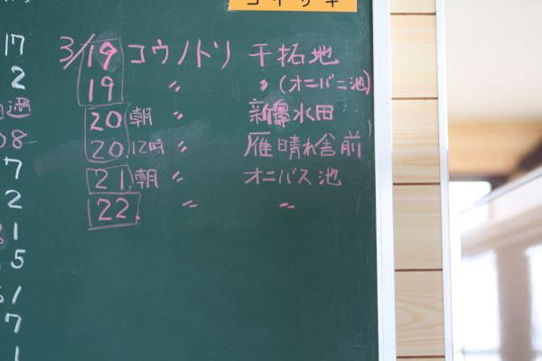so-03380001.jpg