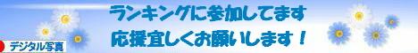 にほんブログ村 写真ブログ デジタル写真へ
